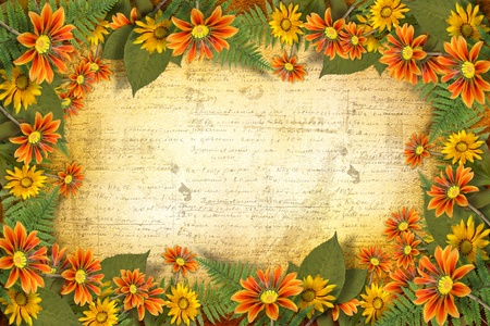 Herbarium of flowers and leaves on the floral background with frame  photo