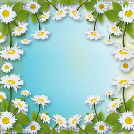 ox eye daisy: Card for invitation or congratulation with bouquet of flowers  Stock Photo