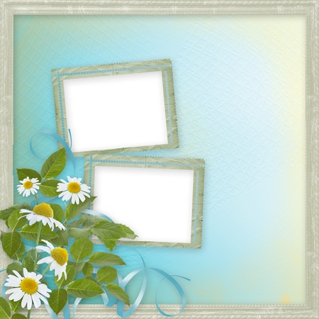 ox eye daisy: Grunge frames with beautiful daisy for design