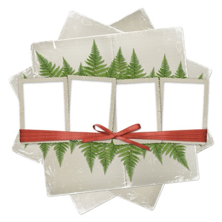 ornamente: White isolated background with paper frame and bunch of twigs fern