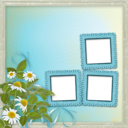 Grunge frames with beautiful daisy for design photo