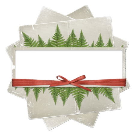 White isolated background with paper frame and bunch of twigs fern photo