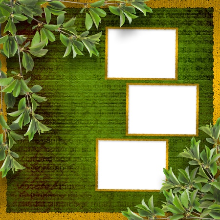 garden wall: Deciduous tree branch on the background of abstract green wall