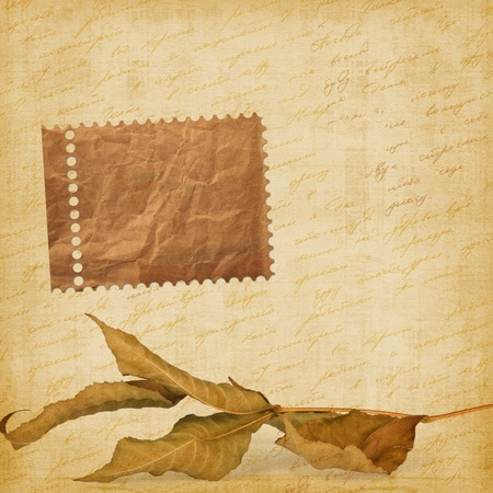 handwrite: Bright autumn leaves on the abstract background with handwrite text