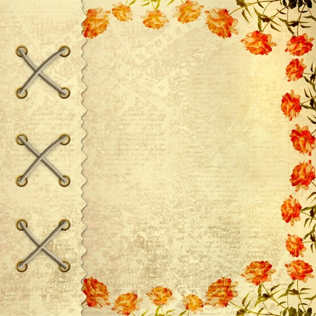 Grunge gold album for photos with painted roses Stock Photo - 13023583