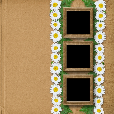 snowwhite: Abstract paper  background with garland of snow-white daisies and frames