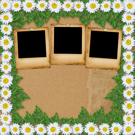 snowwhite: Abstract paper  background with garland of snow-white daisies and slides Stock Photo