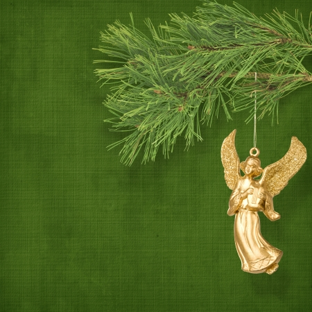 Angel christmas hanging on the pine branch.  photo