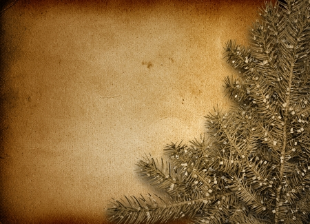 trumpery: Festive invitation or greeting with firtree on the paper card Stock Photo