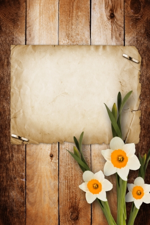 Card for invitation or congratulation with bouquet of flowers narcissus photo