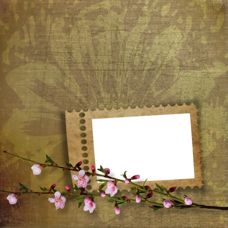 Beautiful abstract background with frame and branch of Sakura  photo