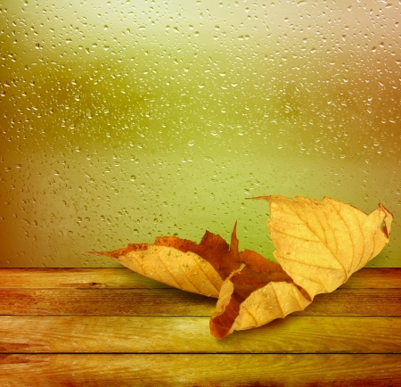 Dried autumn leaves lying on the background of the rainy window photo