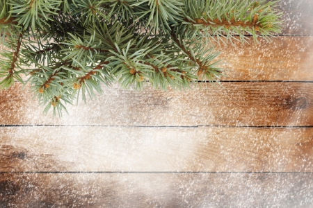 Christmas tree branch on the snow-covered wooden  photo