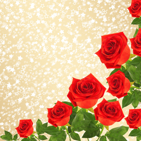 Red rose with green leaves on the gold abstract background Stock Photo