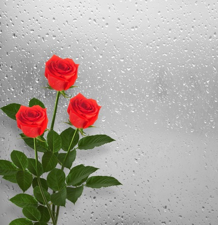 Bouquet of red roses of a window with raindrops