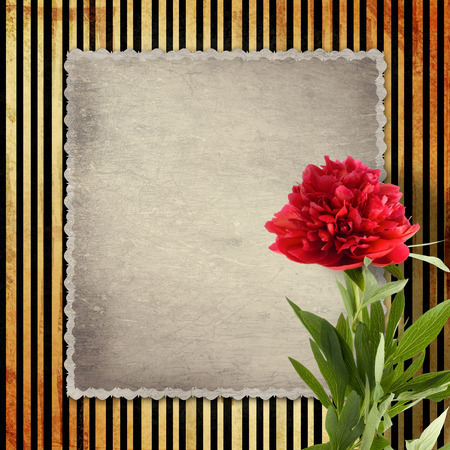 Old vintage card with peony on golden striped background photo