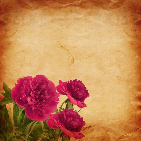 Beautiful bouquet of pink peonies on abstract vintage paper background photo