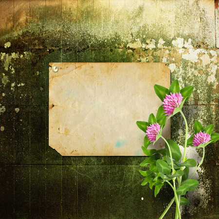 Old announcement with metal buttons and bouquet of flowers of pink clover on shabby stone wall photo