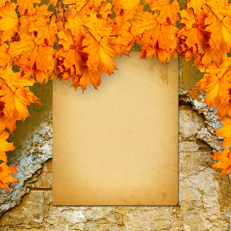 Old paper listing on old brick wall with bright orange autumn leaves photo