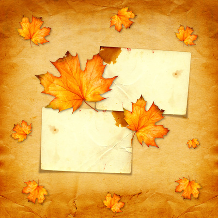 Grunge paper design in scrapbooking style with photoframe and autumn foliage  photo