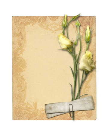 archival: Set of old archival papers and vintage postcard with bouquet of beautiful roses isolated on white background Stock Photo