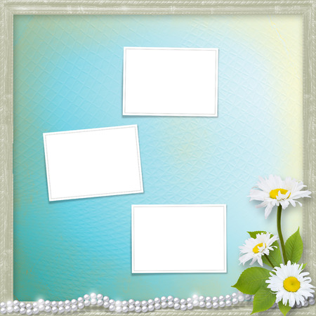 ox eye: Card for invitation or congratulation with bouquet of flowers