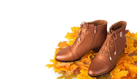 clasp feet: Pair of brown female boots on a background of golden autumn leaves