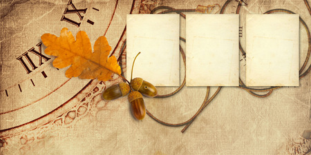 alienated: Old vintage album with autumn oak leaves and acorns Stock Photo