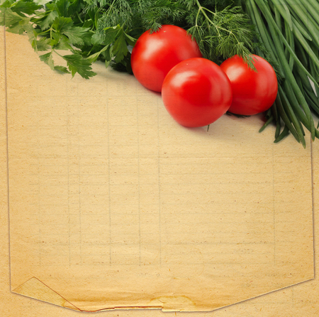 Old retro torn blank recipe book  with photo of tomato and spices Stock Photo