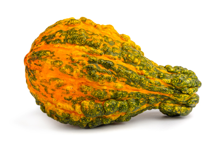 Pumpkin on isolated white background. Fresh, orange  and decorative