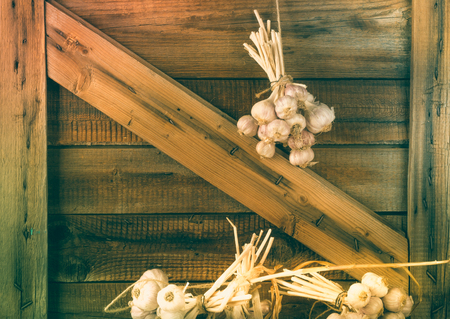 Bundles of fresh garlic dried on vintage wooden wall. Copy space.