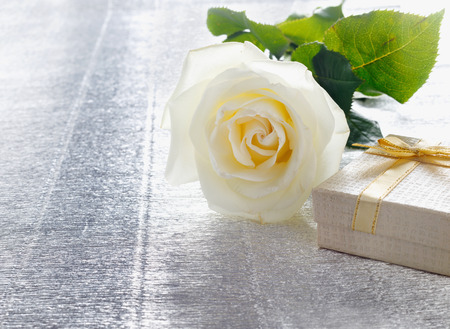 Beautiful white rose with a golden gift box for Valentines Day or wedding Stock Photo
