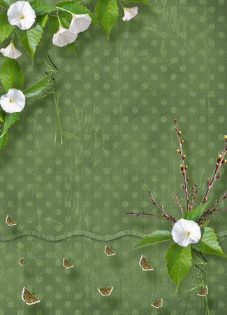 Beautiful delicate bouquet of bindweed and flowering branches with ribbons, butterflies and bows in  style of scrapbook for invitations or greetings Imagens