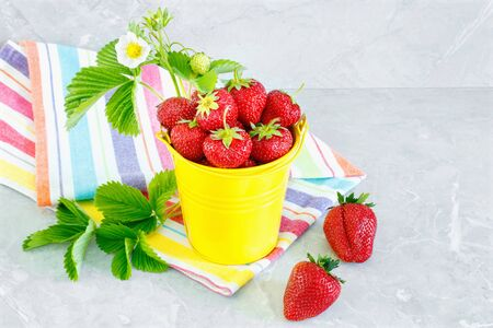 Juicy ripe tasty strawberries in  yellow metal bucket with striped towel on stone countertop. Summer harvest Stock Photo - 124901566