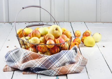 Ripe tasty fresh apricots and apples in  woven metal basket on wooden table in the room Banque d'images - 124901885
