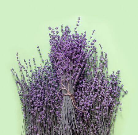 Bouquet of dry purple fragrant lavender on green paper background. Flat lay, top view, copy space concept.