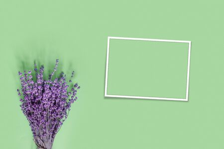 Purple lavender for celebration decoration design on green paper background. Vintage floral card. Holiday party decoration. Flat lay, top view, copy space concept.