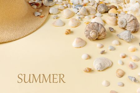 Beautiful straw hat with shells on the ocean coast. Nature summer background.  Flat lay, top view, copy space concept.
