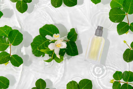 A bottle of perfume in pure waves of water. Flowers and delicate jasmine petals with drops. Flat lay, top view, copy space concept.