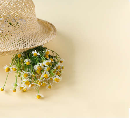 Beautiful straw hat with bouquet of daisies on sand sunny day. Nature summer background. Creative greeting card Foto de archivo