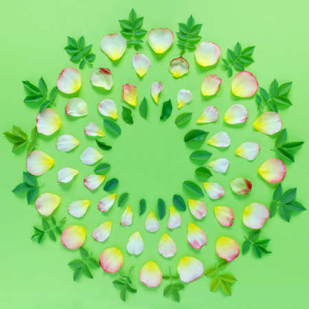 Beautiful round pattern of pink and yellow rose petals and leaves on green paper background. Copy space for your text. Flat lay, top view, copy space concept.