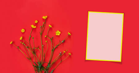 Beautiful delicate postcard with pattern of yellow buttercup flowers for holiday greeting or invitation. Flat lay, top view, copy space concept. Creative red trending background.
