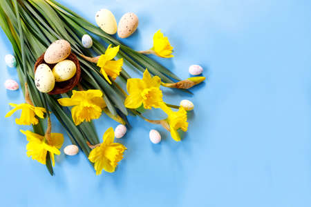 Beautiful Easter card with colorful eggs and yellow narcissus on paper blue background. Flat lay, top view, copy space concept. Copyspace for your text