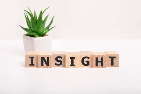 closeup insight word on white background, intelligence and knowledge concept and idea.