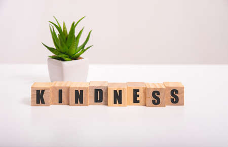 Word KINDNESS made with wood building blocks,stock image Imagens
