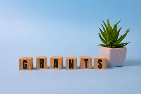 the word of GRANTS on building blocks concept