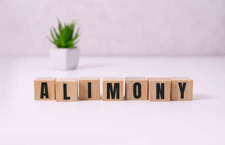 ALIMONY word made with building blocks on white
