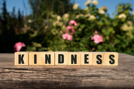 Word KINDNESS made with wood building blocks,stock image.