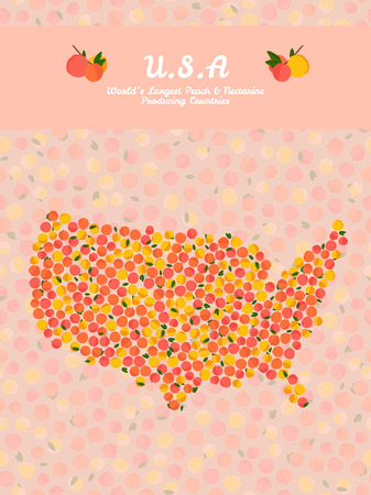 nectarine: U.S.A map poster or card. Veggie postcard. Map of America made out of pink peaches. Fruitarian illustration. Worlds Largest Peach and Nectarine Producing Countries. Can be used as seamless pattern.