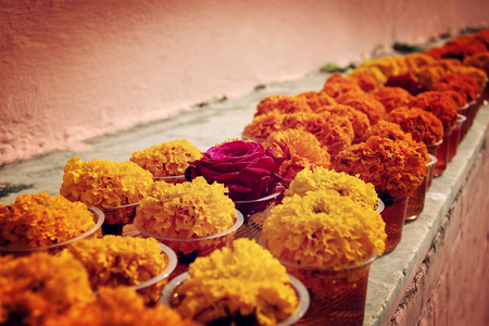 gaya: Marigold and rose for offering respect at Mahabodhi Temple. Bodh Gaya, India. Stock Photo